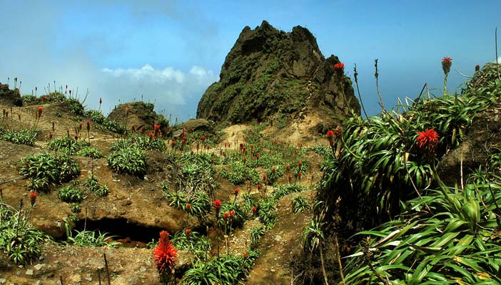 sommet-volcan-soufriere-basse-terre